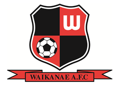 Waikanae Firsts continue unbeaten run